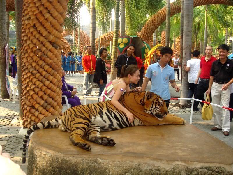 Khám phá thiên đường thế giới động vật hoang dã tại Công viên Safari